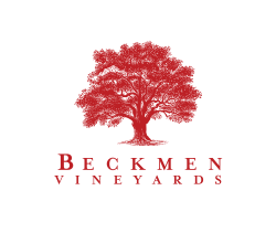 Beckmen Vineyards