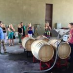 VisitSYV - Classic Wine Tours of Santa Barbara